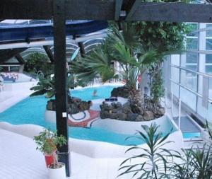 Subtropische zwembaden Gelderland, Berkenhorst in Kootwijk