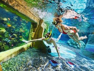 Koraalbaden Aqua Mundo Center Parcs