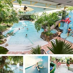 Subtropisch zwembad Limburgse Peel collage