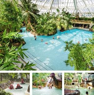 Subtropisch-zwembad-Bispinger-heide-collage