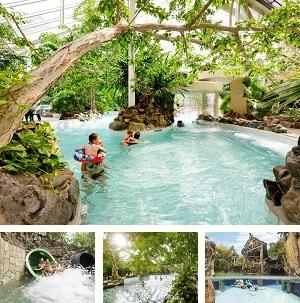 Subtropisch-zwembad-Erperheide-collage